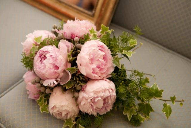 peonias rosas-2