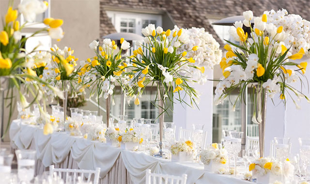 AMARILLO QUE TE PILLO-2045-atrendylifeeventsandweddings