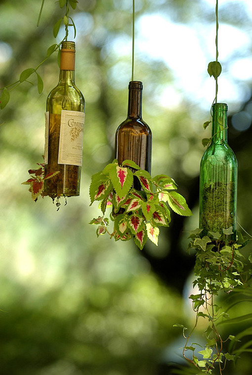 botellas-de-vino-como-macetas