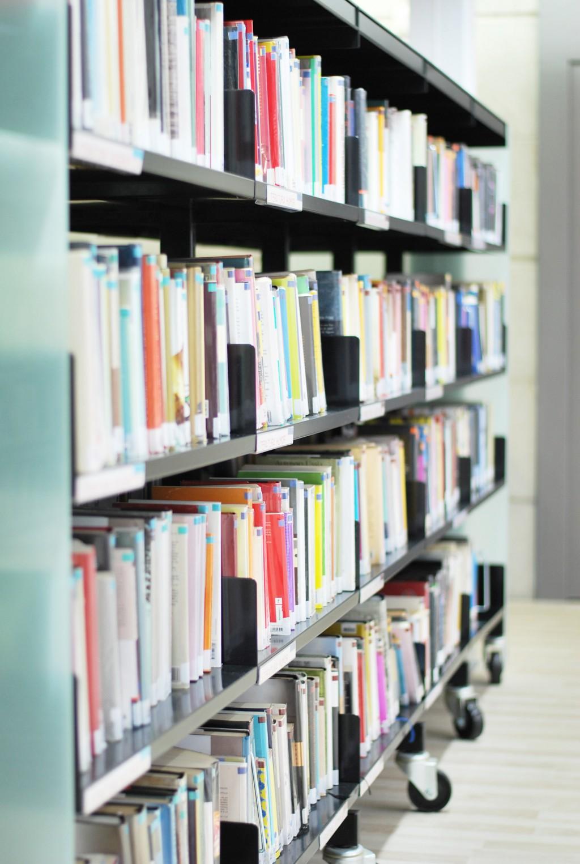 biblioteca_castrillón23