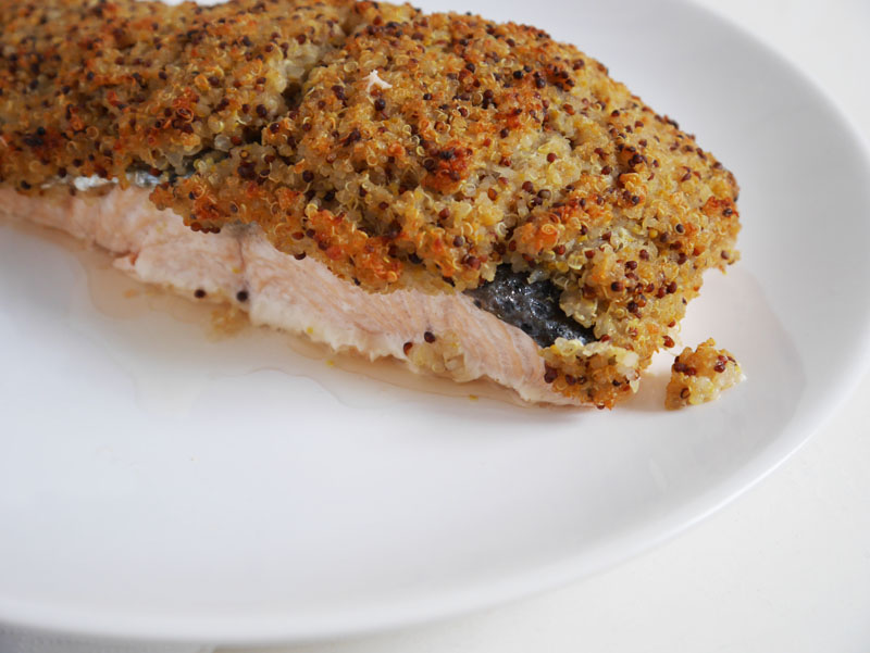 receta de salmón con costra de quinoa-9049-baballa