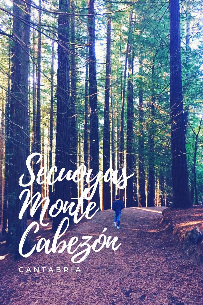 Secuoyas Monte Cabezón en cantabria-10646-baballa