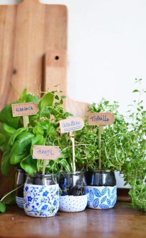 mini huerto, cultivo en familia