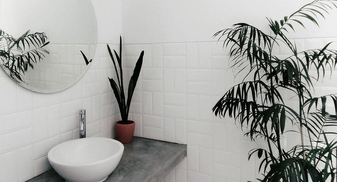 baño con decoración minimalista chg