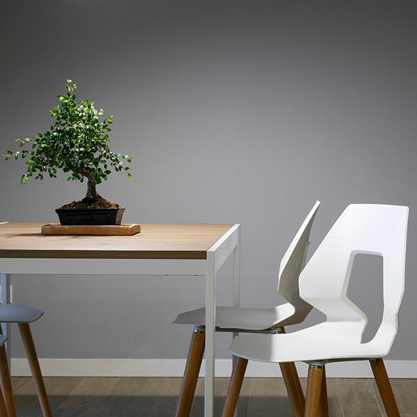 hipoteca verde planta interior