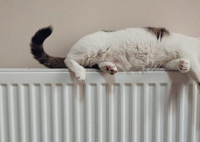 Cómo mantener la temperatura en casa sin aumentar el gasto energético
