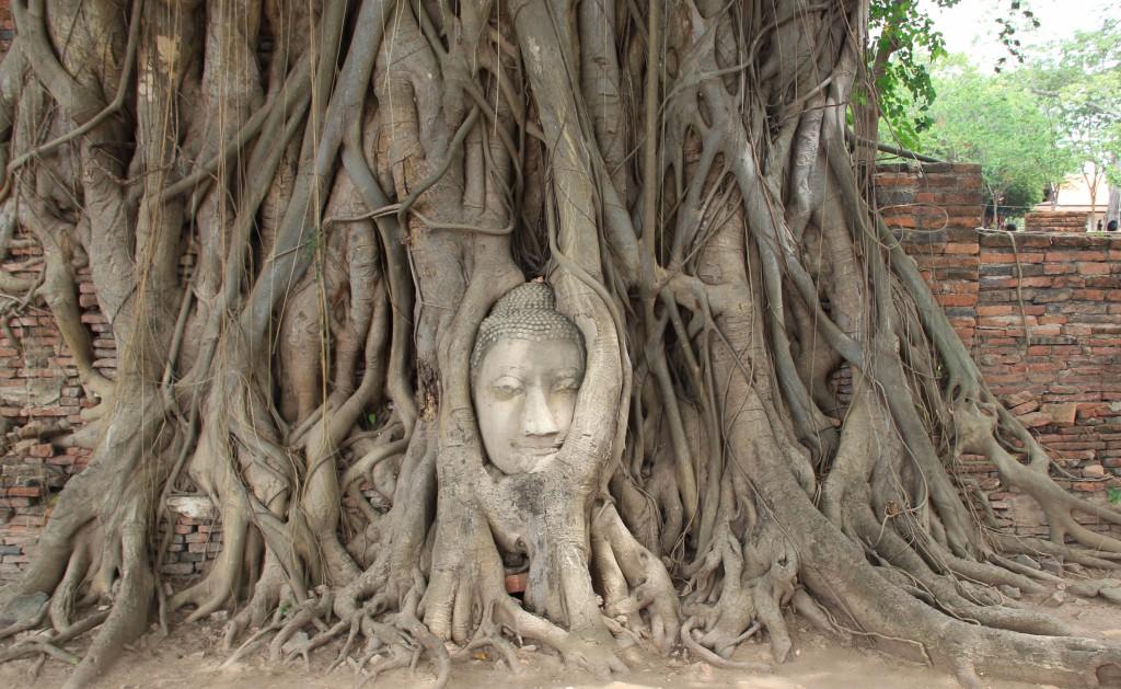ayutthaya_culetdecirereta