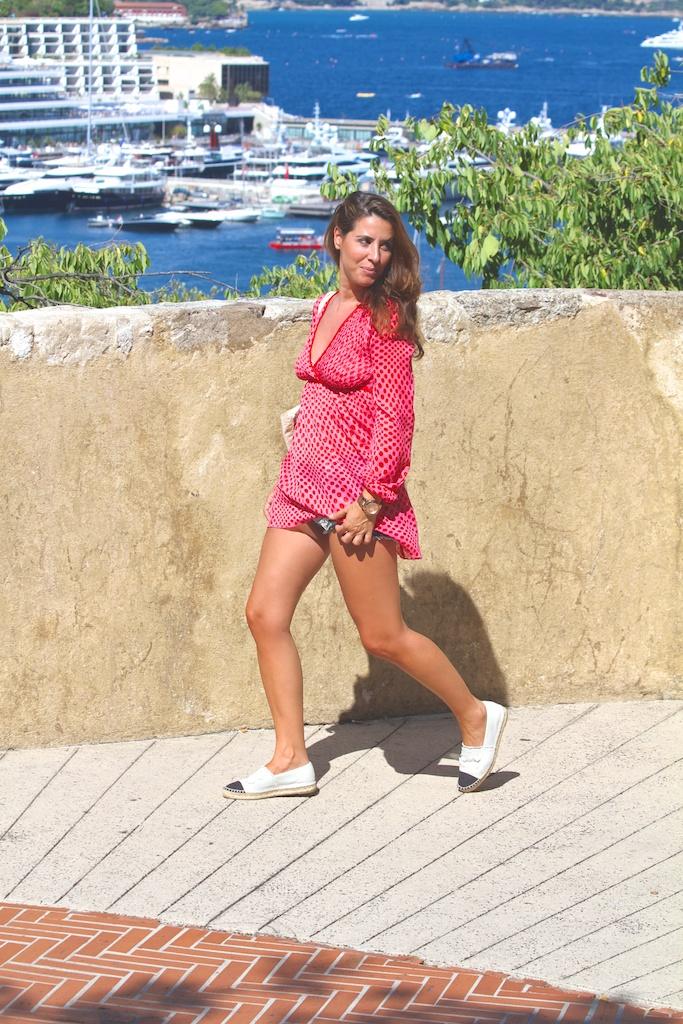 Visita a Mónaco-52231-descalzaporelparque