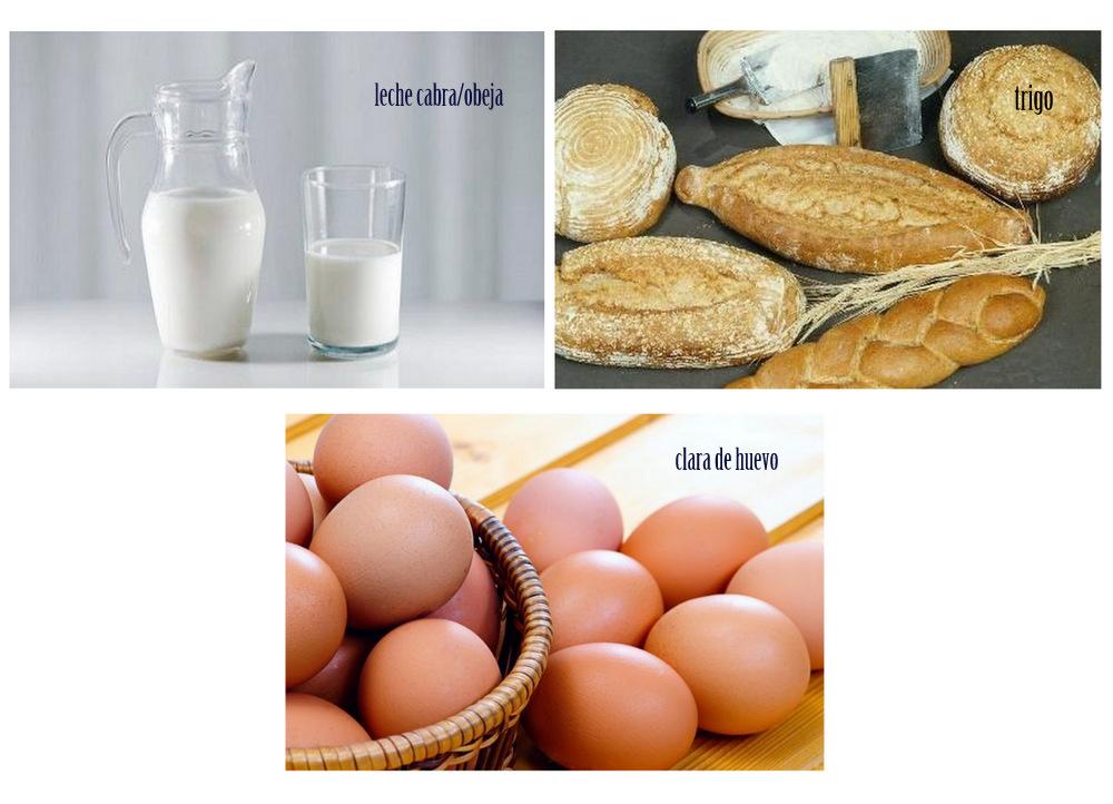 healthy life, niuno, test intolerancia alimentaria, bienestar, cuidarse, vida sana, descalzaporelparque