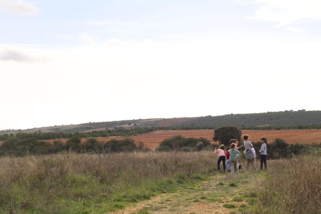 viajar con niños (y entre amigos)-53358-descalzaporelparque