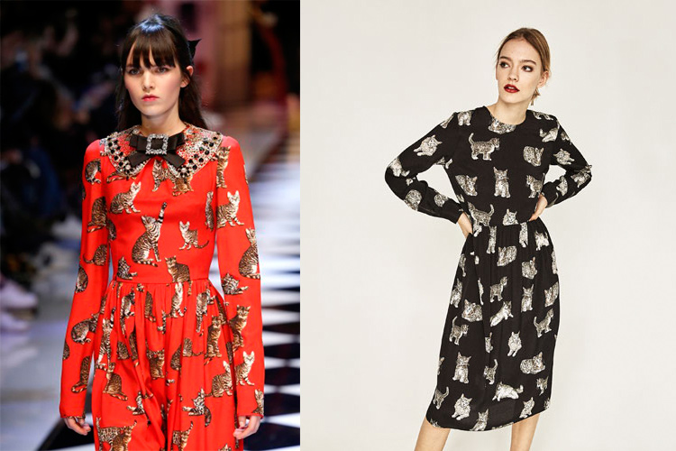 Vestido de gatos: Dolce & Gabbana y Zara-49366-entutiendamecole