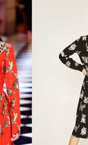 Vestido de gatos: Dolce & Gabbana y Zara