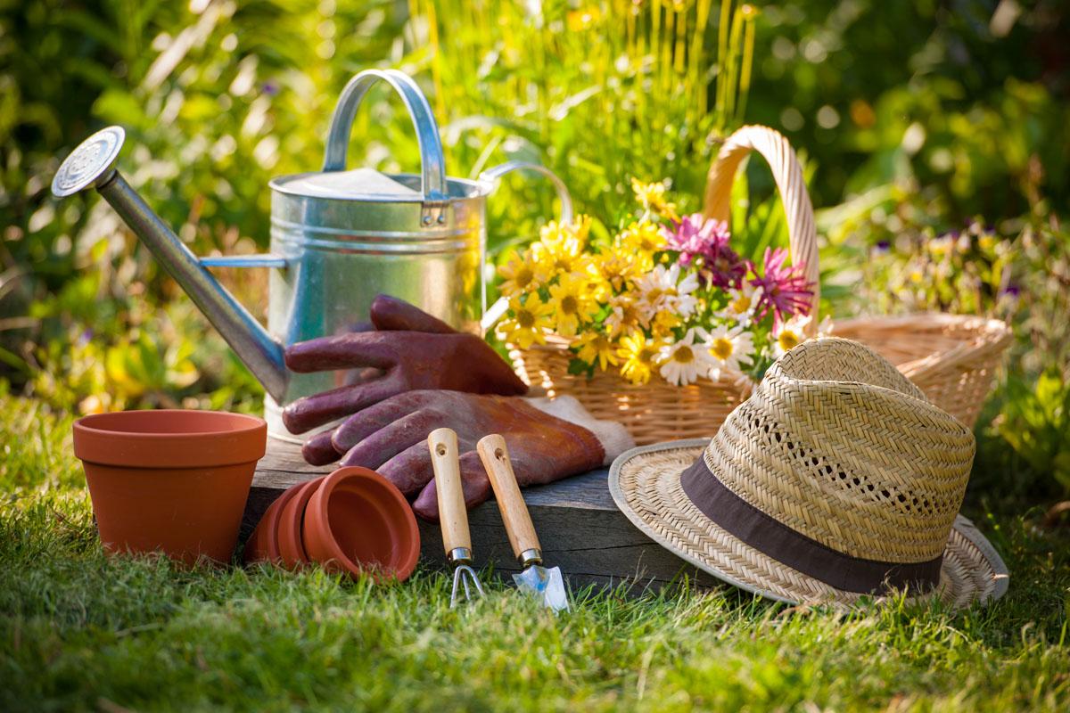 Beneficios de la jardinería para tu salud mental