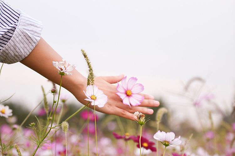 Pásate a la cosmética orgánica con Go Organic-271-asos