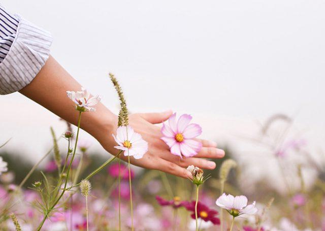 Pásate a la cosmética orgánica con Go Organic