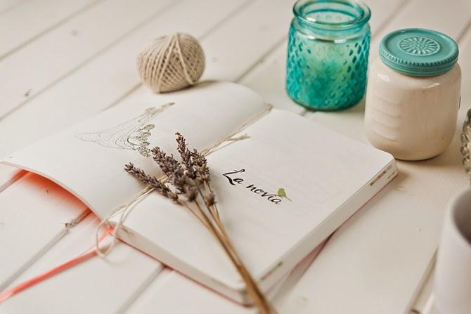 diario de la novia 2