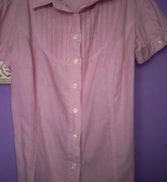 Camisa Rosa.