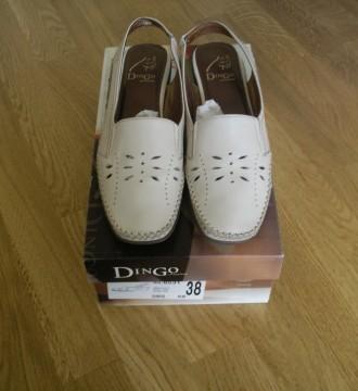 zapatos Dingo