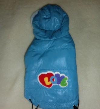 abrigo para perrro pequeño
