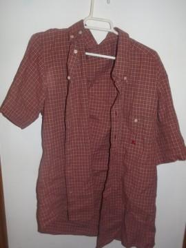 Camisa manga corta Burberry