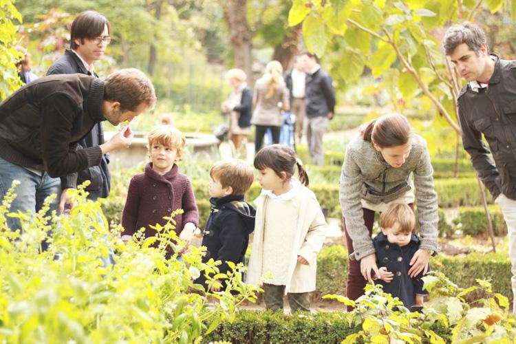 jardin-botanico-madrid