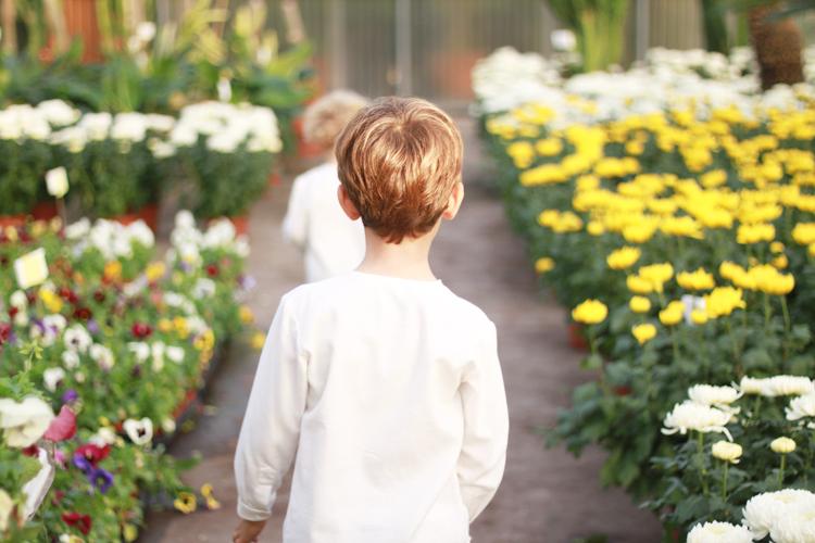 flores-blog-mamatrendy