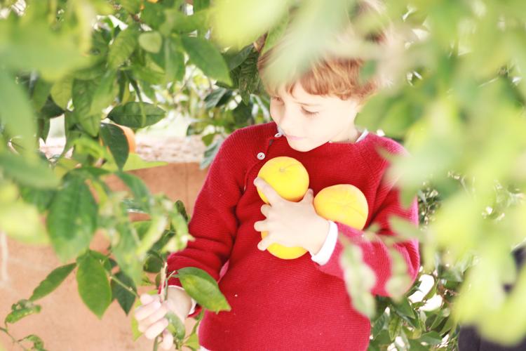 fruta-para-los-ninos-mamatrendy