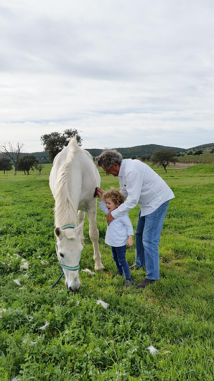 naturaleza-ninos-campo-caballos-mamatrendy