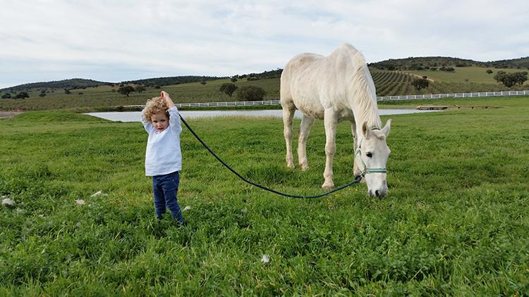 planes-con-ninos-mamatrendy-jaimolas-caballos