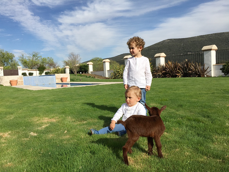 Planes con niños – Blog Mamá trendy