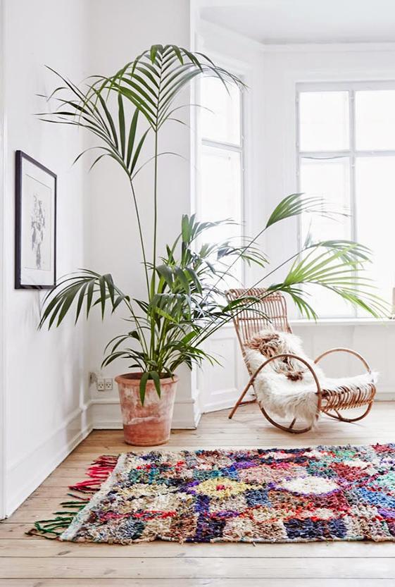 plantas-deco-inspiracion-mamatrendy