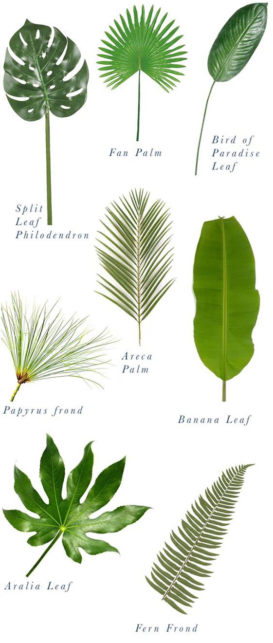 plantas-para-decorar-mamatrendy