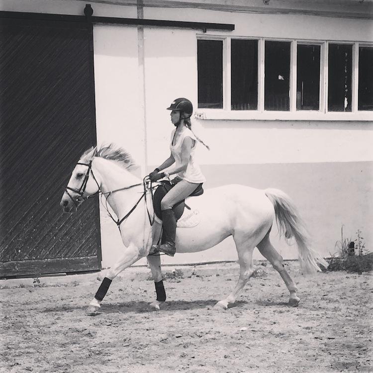 caballinos8