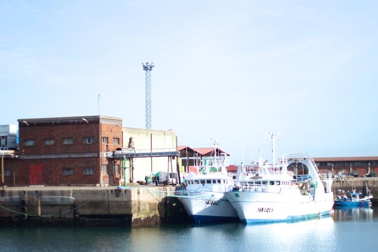 barcoselmusel21