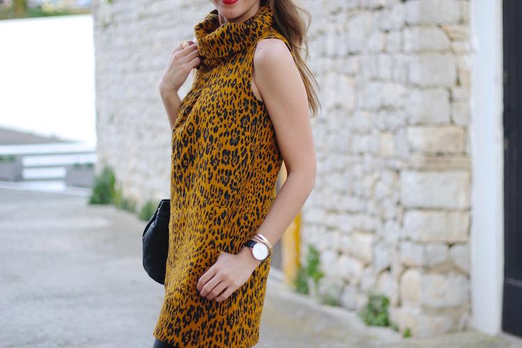leopard17