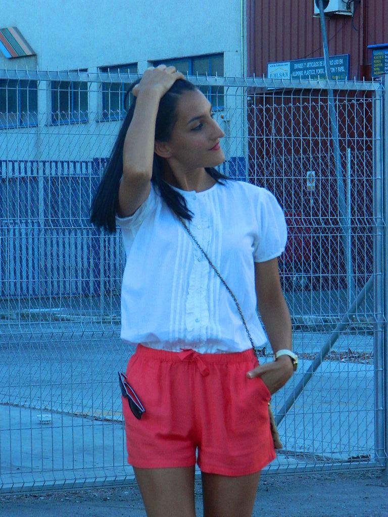 Mono Flamenco 010