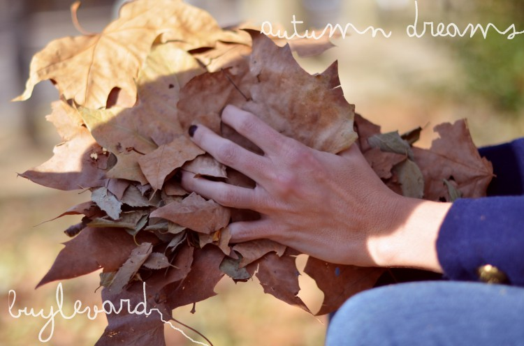AUTUMN DREAMS-50158-mydailystyle