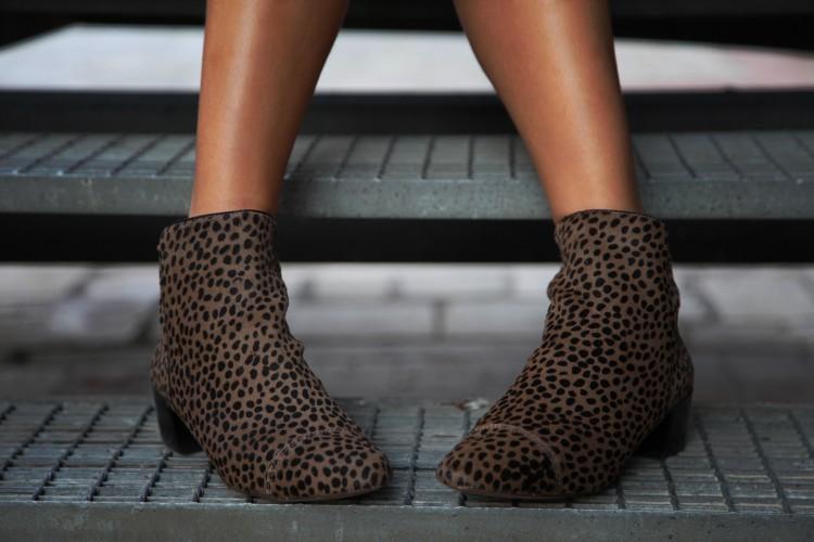 leopard 5 copia