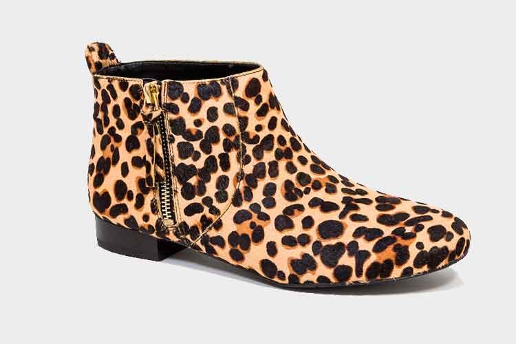 leopardo2
