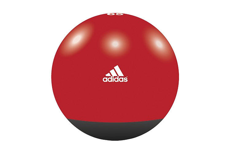 Gymball Adidas Primeriti