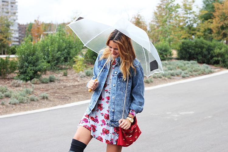 rainy-blogger-2