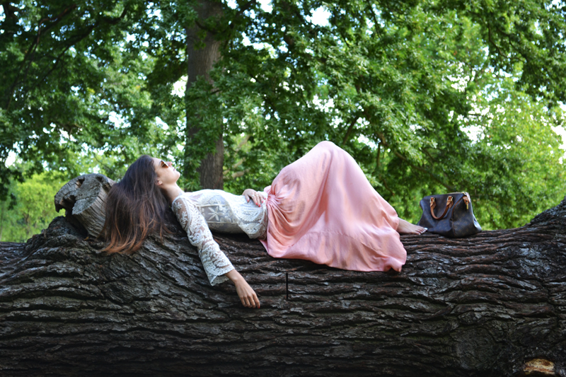 lay in a tree 2