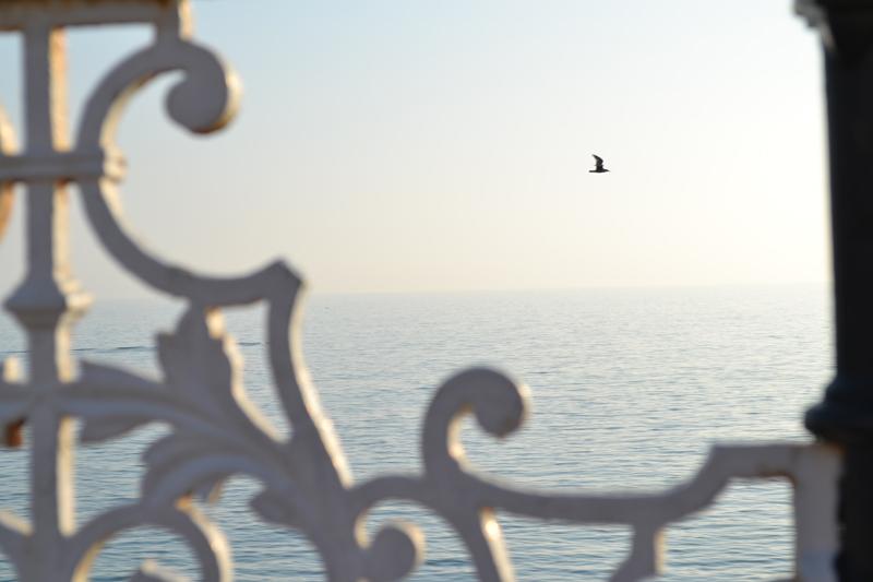 sea brighton