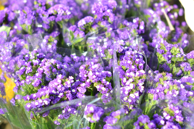 flower market london purple