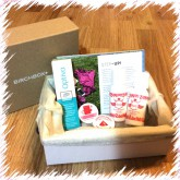 Birchbox Step Up-944-lauryn84