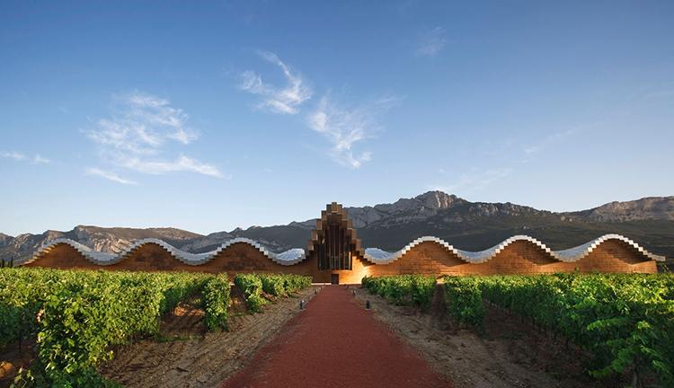 Vino, arte y cultura-290-winelovely