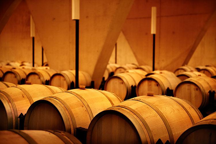 Cubas y barricas-347-winelovely
