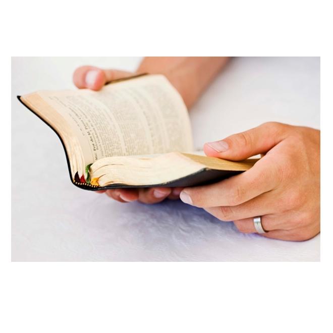 Biblia en la mano
