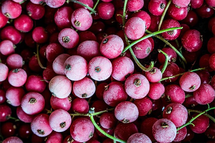 Alimentos para vivir más: frutos rojos