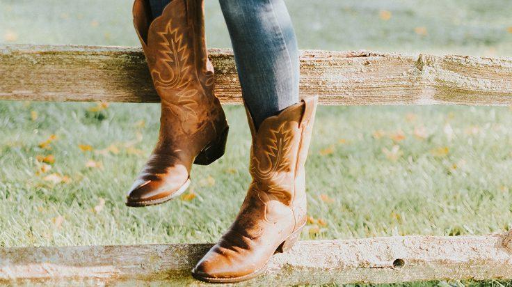 Botas tipo cowboy